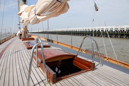 Blazing Star : Photo 3