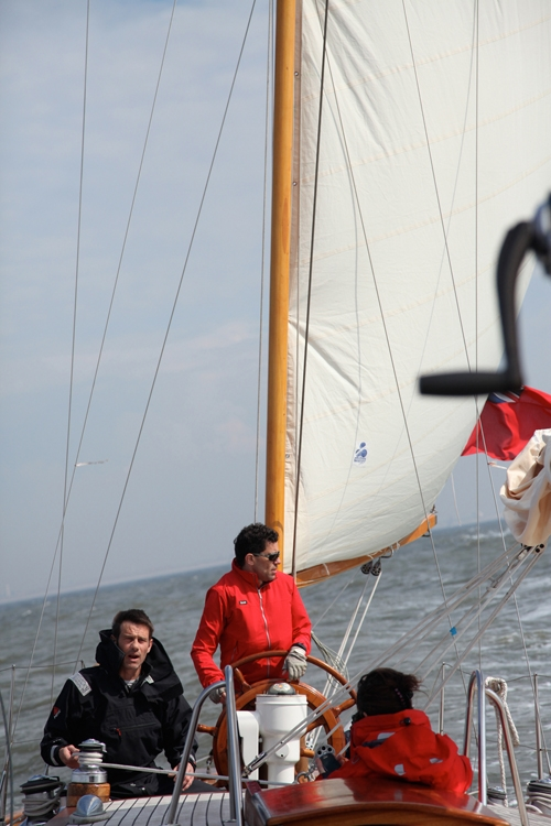 Blazing Star : Photo 4