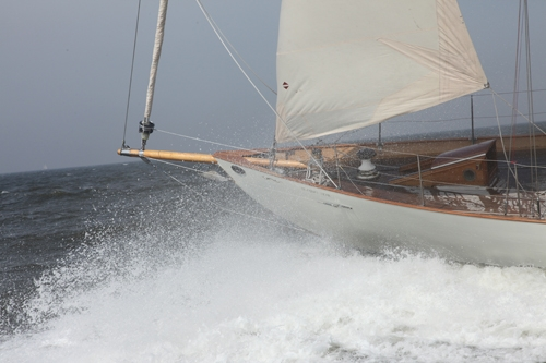 Blazing Star : Photo 9