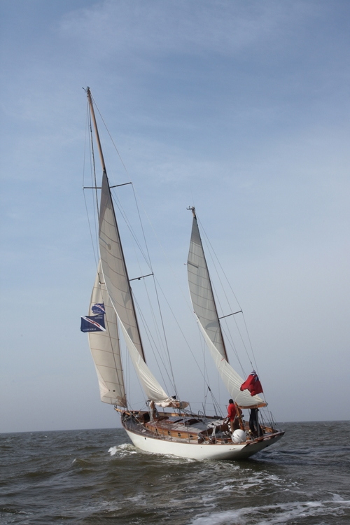 Blazing Star : Photo 10